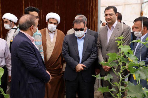 افتتاح اولین گلخانه هیدروپونیک تولید صیفی جات در شهرستان ازنا