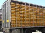کشف ۷ هزار قطعه مرغ قاچاق در دره شهر