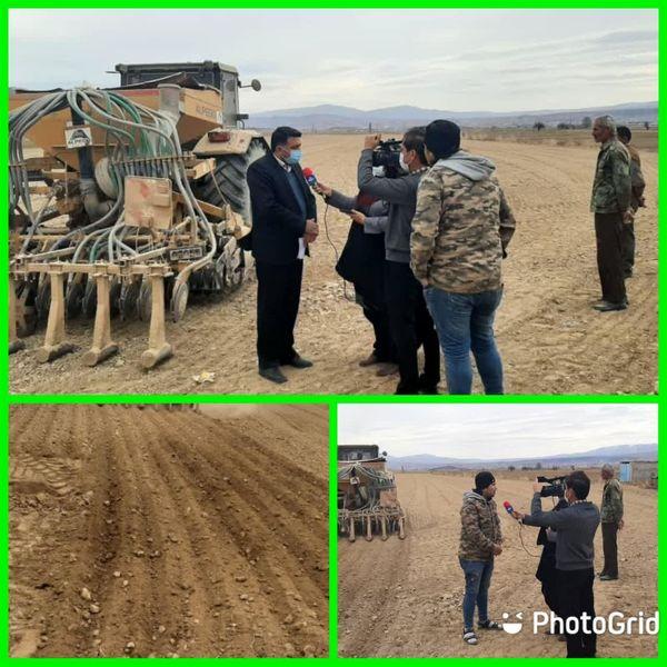 شروع کاشت پیاز خوراکی در شهرستان مانه وسملقان
