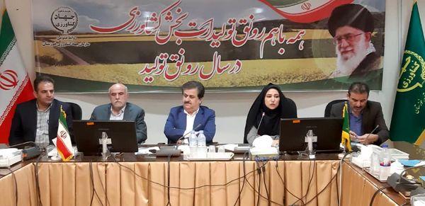 سیاستهای تشویقی و تخفیفهای بیمهای برای تولید کنندگان محصولات گواهی شده و ارگانیک در خوزستان