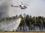تخصیص ۵۰ میلیارد ریال اعتبار برای تأمین امکانات اطفای حریق جنگلها