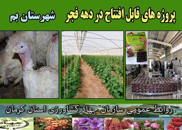 بهرهبرداری از 19 طرح کشاورزی و دامپروری در شهرستان بم