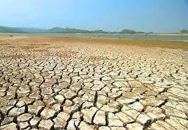 در شرایط خشکسالی دامداران عشایری باید مورد حمایت قرار گیرند