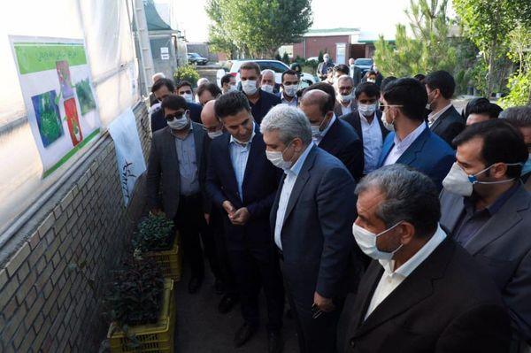 معاون رییس جمهور از یک شرکت دانش بنیان فعال تولید بذر و نهال در شهرستان آبیک بازدید کرد