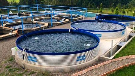 کاهش مصرف آب با استفاده از گسترش استخرهای کوچکمقیاس پرورش آبزیان