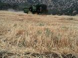 برداشت غلات در شهرستان سیروان آغاز شد
