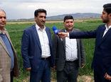 اجرای طرح پی وی اس گندم آبی در شهرستان جلفا