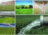 60 درصد جمعیت استان ایلام در بخش کشاورزی مشغول به فعالیت هستند