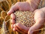 افزایش4.5برابری تسهیلات پرداختی برای تأمین بذر گواهی شده در سال1400