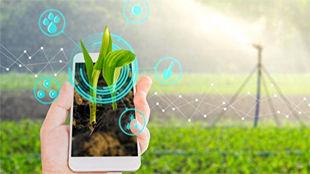 کاربرد اپلیکیشن های تلفن همراه در کشاورزی