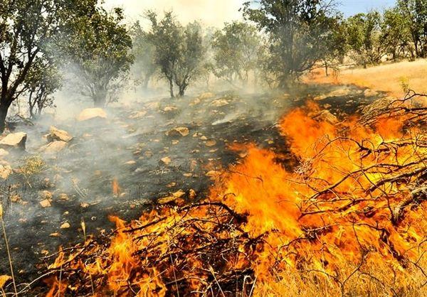 مهار آتشسوزی در ۱۲ هکتار باغات  و مراتع چهارمحال و بختیاری