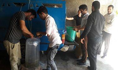 20000 قطعه بچه ماهی گرمابی در سطح شهرستان سرایان توزیع شد
