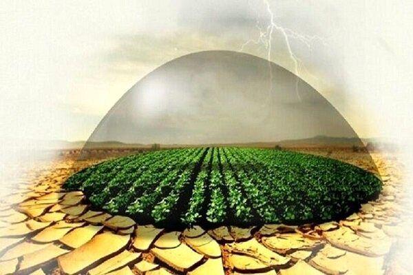 ۹ درصد از اراضی کشاورزی خسارت دیده کردستان زیر پوشش بیمه است
