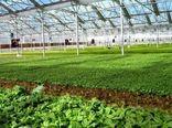 اختصاص ۵۱ میلیارد تومان اعتبار به ۸ طرح زیرساختی کشاورزی خراسان شمالی
