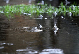 بارندگیها 237 درصد افزایش داشت