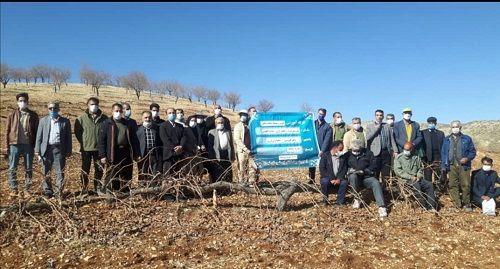 اجرای بیش از 13 هزار ساعت آموزش و ترویج کشاورزی در شیراز