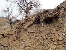 بارندگیهای شدید خسارات فراوانی به بخش کشاورزی شهرستان کرمان وارد کرده است