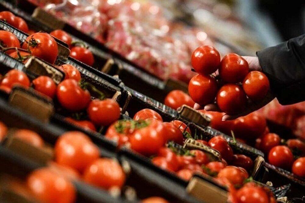 توزیع بدون محدودیت گوجه فرنگی در میادین شهرداری تهران