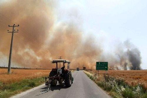 حریق تهدیدی جدی برای مزارع شتوی قیروکارزین