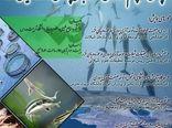 چالش ها و چشم اندازهای توسعه آبزی پروزی در حوزه دریای خزر