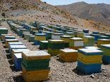 عسل تابستانه در شهرستان بردسیر  در حال برداشت است