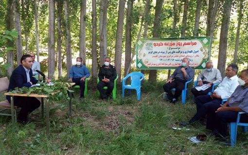برگزاری مراسم روز مزرعه گردو در کلیبر