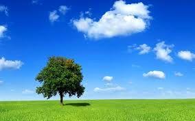 روز ملی هوای پاک فرصتی برای تجدید نظرها