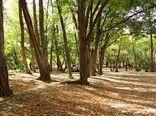 واگذاری مدیریت پارکهای جنگلی چهارمحال و بختیاری به بخش غیردولتی