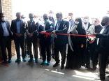 یک واحد دامداری دام سبک در بوئین زهرا افتتاح شد