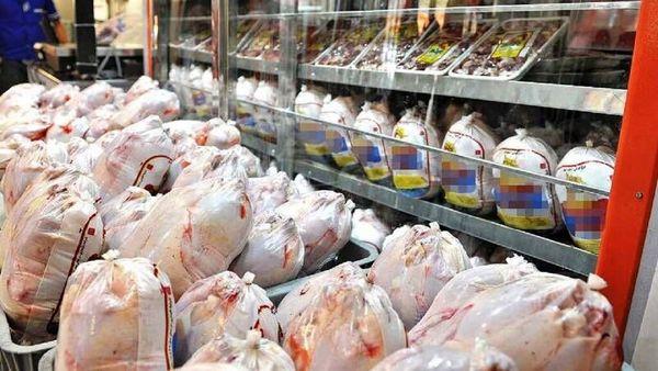 بازار مرغ چهارمحال و بختیاری به آرامش رسید