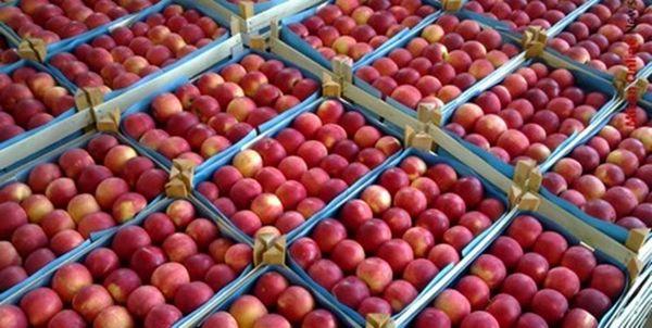آمادگی آذربایجان غربی برای صادرات 650 هزارتن سیب