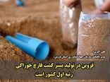 قزوین در تولید بستر کشت قارچ خوراکی در رتبه اول کشور قرار دارد
