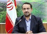 کاشت 53 هزار اصله نهال جنگلی در فارس