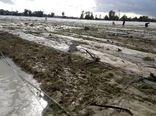 آغاز بازسازی تأسیسات کشاورزی خسارتدیده سیل در سیستانوبلوچستان