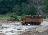 کشف 35 هزار متر مکعب چوب از قاچاقچیان در سال99