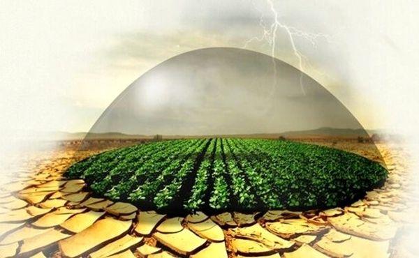 بیمه محصولات کشاورزی تا ۱۵ اسفند امسال در آذربایجان غربی تمدید شد