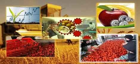 صنایع تبدیلی زمینه اشتغال ۱۱ هزار نفر اصفهانی را فراهم میکند