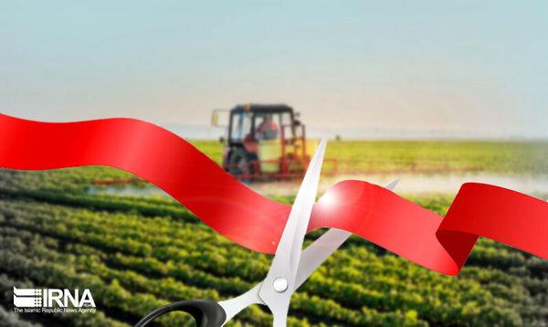 سرمایهگذاری در بخش کشاورزی کامیاران ۱۴۳ نفر را صاحب شغل کرد