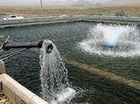 راه اندازی سه واحد پرورش ماهی سردابی در سرچهان