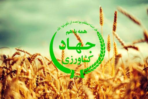 98 درصد اعتبارات بند (خ) ماده 33 استان بوشهر جذب شد
