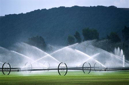صرفه جویی 224 میلیون مترمکعب آب کشاورزی