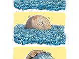 خطر پلاستیک برای محیط زیست -کارتون مهناز یزدانی