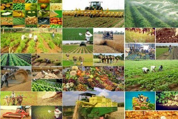 ۵۸ پروژه کشاورزی در خراسان شمالی به بهرهبرداری میرسد