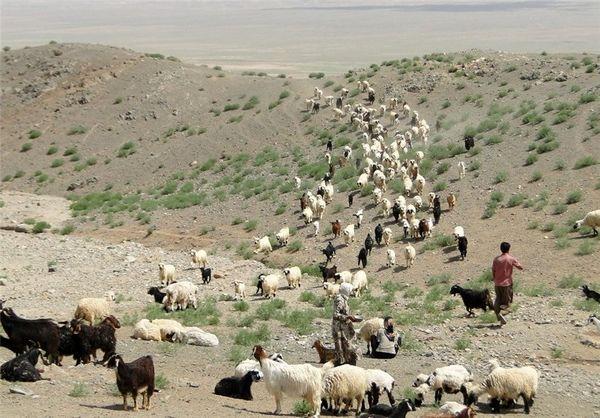 نقش روستاییان و عشایر در تولید و سازندگی کشور مهم و تعیین کننده است