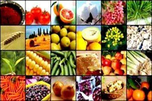 بازارسازی محصولات کشاورزی اولویت است