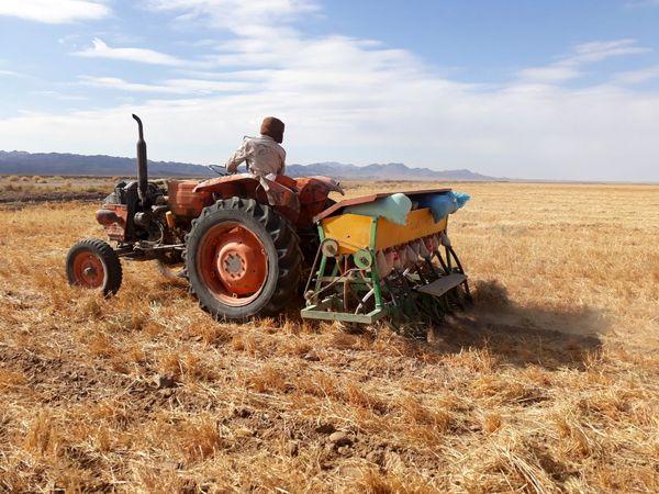 اجرای کشاورزی حفاظتی در سطح 3000 هکتاراز اراضی  کشاورزی سربیشه