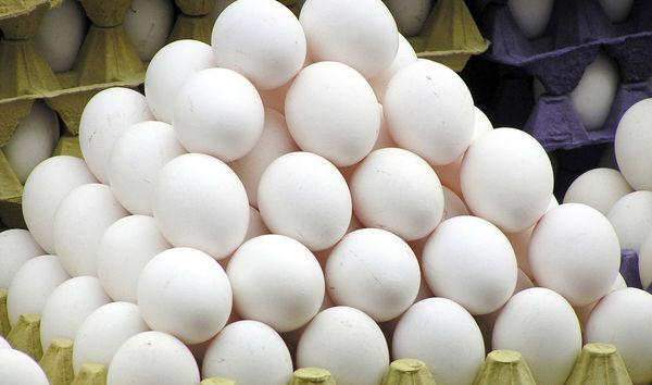 گرانی تخم مرغ در بازار اصفهان