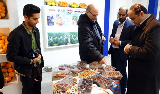 جنوب کرمان، رتبه نخست توسعه گلخانههای کشور