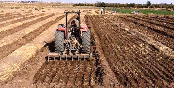 تحقق 100 درصدی برنامه کشت پاییزه در کردستان