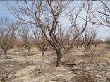 سیستان و بلوچستان، اردبیل و آذربایجانشرقی کم بارشترین استانهای کشور